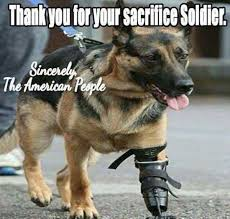 Dogs Memes - war service dogs meme my day are funny serious cute on thechive