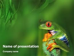 frog presentation template for powerpoint and keynote ppt star
