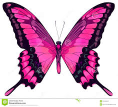 beautiful pink butterfly stock vector illustration of environment