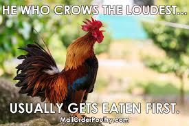 Rooster Meme - he who crows the loudest meme mailorderpoultry com