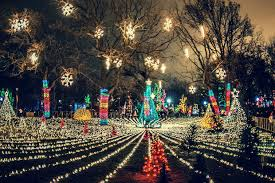 lincoln park zoolights starts friday with two million lights