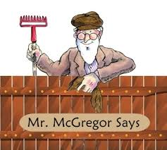 mr mcgregor s garden rabbit how does mr mcgregor s fence work