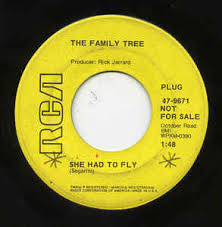 the family tree 8 she had to fly he spins around vinyl at