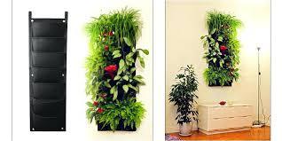 indoor herb garden wall indoor herb wall amazing indoor herbs garden ideas indoor wall herb