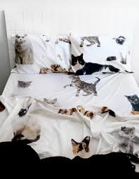 Difference Between Bed Sheet And Bed Cover by Lifesize Cat Double Bed Sheet Set Gatos Pinterest Double Bed