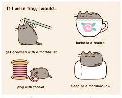 Pusheen The Cat Meme - i am pusheen the cat claire belton 8601404318603 com books