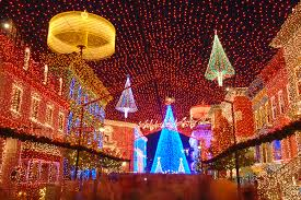 disney parks after a canopy of lights at disney s