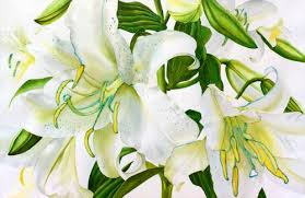 white lillies watercolor painting demonstration of casa blanca lilies floral