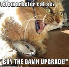 Telemarketer Meme - telemarketer cat sez buy the damn upgrade cheezburger funny