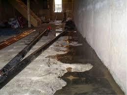 basement water seepage everdry michigan