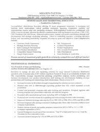 Bank Sales Executive Resume Can You Put Two Addresses On A Resume Sample Of A Good
