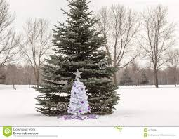 small white christmas tree with purple and silver decorations