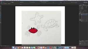 affinity designer tips selecting saving and tracing images
