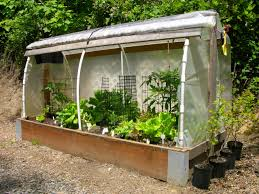 collection how to make a cheap greenhouse photos best image