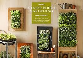 Indoor Herb Garden Kit How To Grow Indoor Edible Garden Guide Williams Sonoma