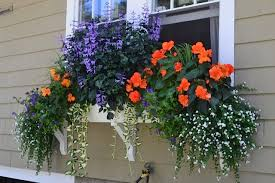 15 amazing flower box ideas that will catch your eyes u2022 diy home decor