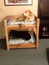 Wood Bunk Beds Diy by Accessories U0026 Furniture Inspiring Diy Pet Bunk Bed Design Ideas