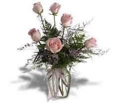 murfreesboro flower shop half dozen pink roses in murfreesboro tn murfreesboro flower shop