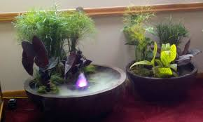 Container Water Garden Ideas Container Water Garden Creative Gift Ideas One Day Projects