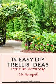 easy diy trellis ideas champagne and mudboots