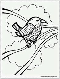 realistic bird coloring pages fablesfromthefriends com