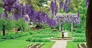 giardini rocciosi in ombra fiori per giardino quali scegliere il verde