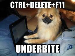 ctrl delete f11 underbite pc pomeranian meme generator