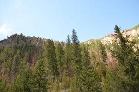 Forrest Fenn Treasure Map Trdollar Yellowstone Search For Fenn U0027s Treasure 2017 Album