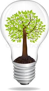 tree in light bulb eco concept isolated on white background