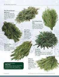 hiawatha evergreens home