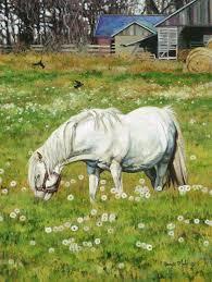 58 best bonnie mohr images on farm farm and