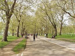file broad walk in hyde park by park geograph org uk