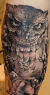 38 best owl images on pinterest owl owl tattoos and tattoo ideas