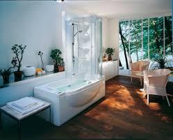 Bathroom Ornaments Bathroom Alluring Bathroom Decoration With Stone Tile Bathroom