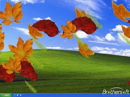 download free autumn leaves screensaver autumn leaves screensaver