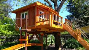 kids treehouses treehouse builders in northern california kids