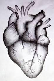 real heart drawings u2013 defenderauto info