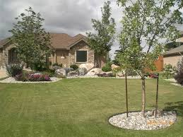 inspiring natural yard decoration with wide lawn and high trees