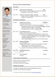 sample resume basic job resume for job application example resume application sample curriculum vitae for job application model cv basic appication letter model resume for job application example