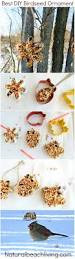 how to make the best birdseed ornaments for kids crafts for