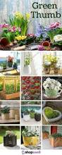 125 best green thumb garden essentials images on pinterest