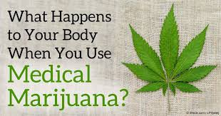 How Far Away Should Marijuana by What Happens To Your Body When You Use Medical Marijuana