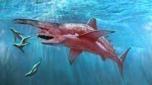 sharks you won u0027t believe actually exist youtube