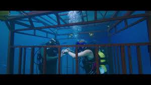150 Meters Into Feet by 47 Meters Down U0027 Has Sharks Not Much Depth Cnn