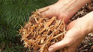 pros and cons of organic mulches pine needles ornamental bark