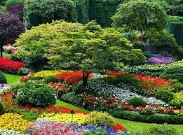 50 most beautiful gardens in the world omusisa