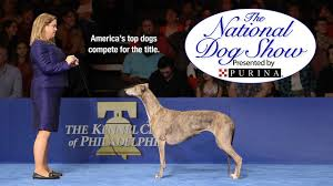 the national show nbc