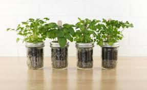 indoor herb garden ideas 35 creative diy indoor herbs garden ideas ultimate home ideas diy