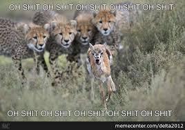 Run Bitch Run Meme - run bitch run by delta2012 meme center
