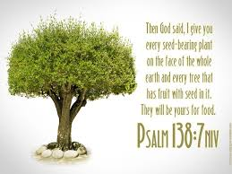psalm 138 7 tree of wallpaper christian wallpapers and